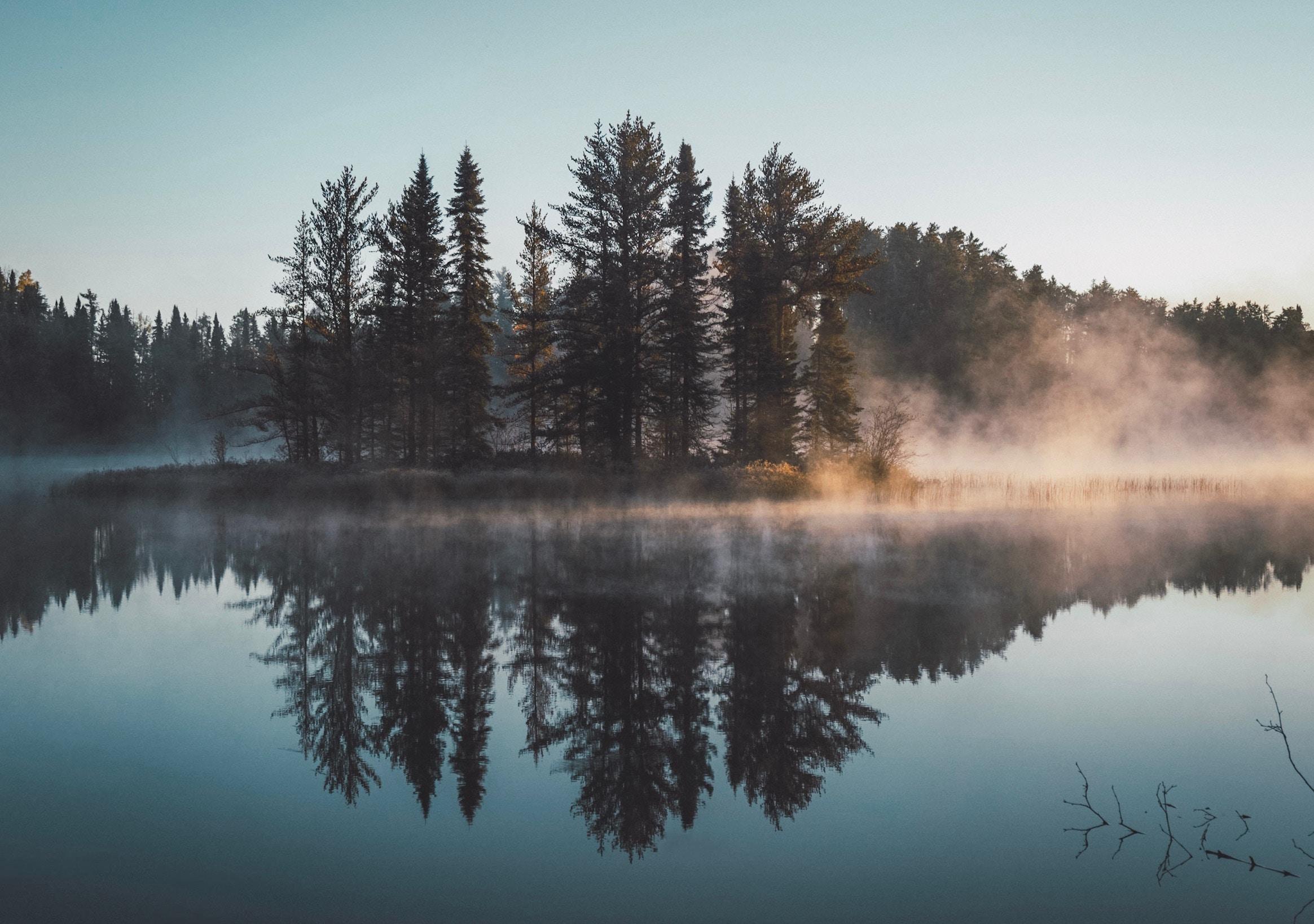 Kuusipuita luodolla peilityynessä järvessä. Vaimea sumupeitto kylpee aamuauringon valossa.